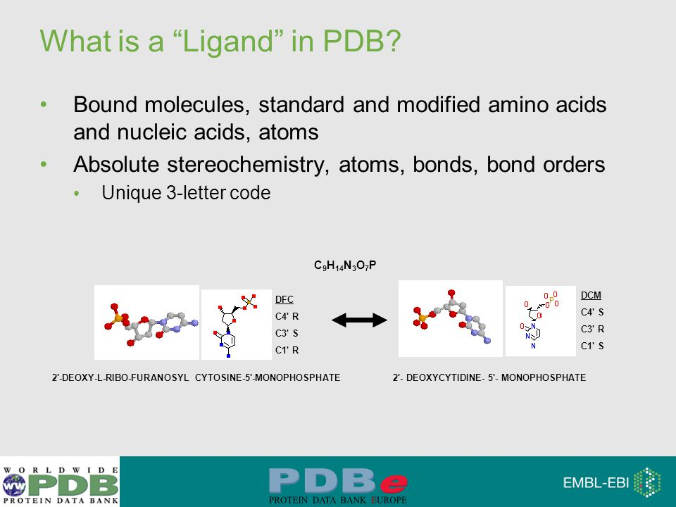 """What is a """"Ligand"""" in PDB? Bound molecules, standard and modified amino acids and nucleic acids, atoms Absolute stereochemistry, atoms, bonds, bond or"""