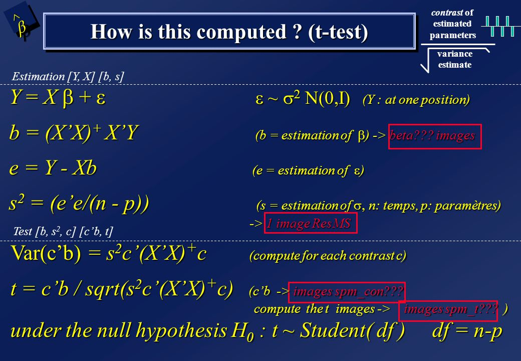 SPM{t} A contrast = a linear combination of parameters: c´   c' = 1 0 0 0 0 0 0 0 test H 0 : c´  b > 0 ? T test - one dimensional contrasts - SPM{