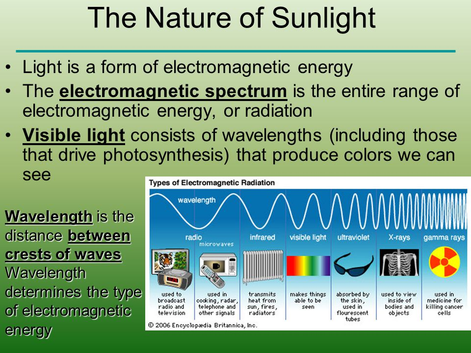 The Nature of Sunlight Light is a form of electromagnetic energy The electromagnetic spectrum is the entire range of electromagnetic energy, or radiat