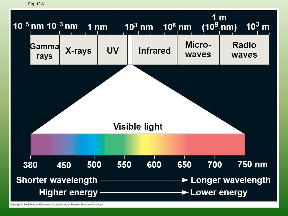 UV Fig. 10-6 Visible light Infrared Micro- waves Radio waves X-rays Gamma rays 10 3 m 1 m (10 9 nm) 10 6 nm 10 3 nm 1 nm 10 –3 nm 10 –5 nm 380 450 500
