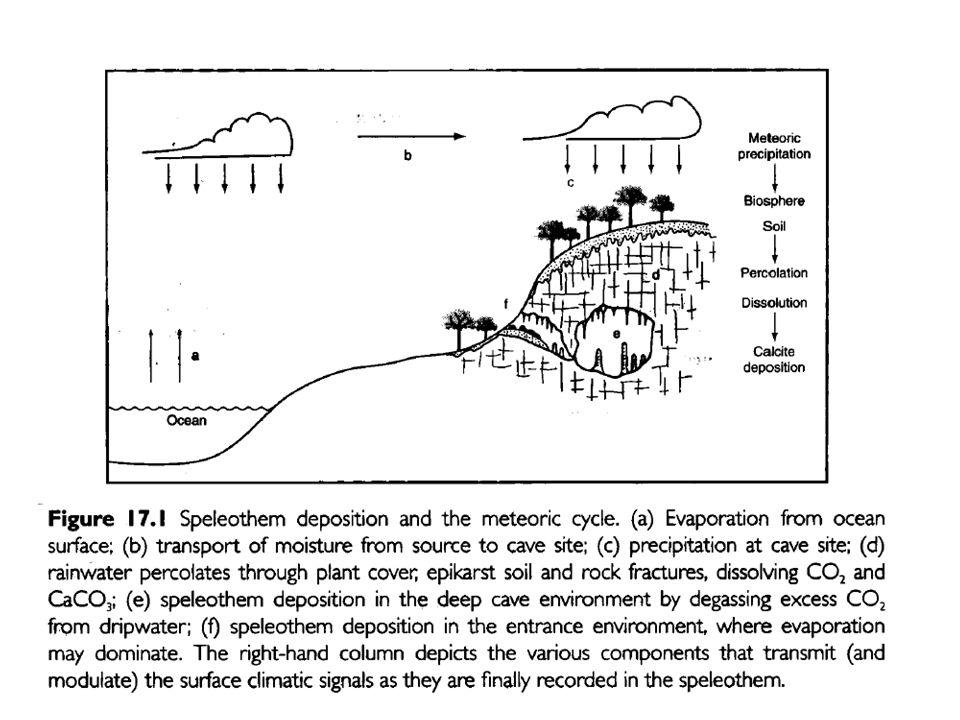 Speleothem Dating of speleothems is based on U-Th series.
