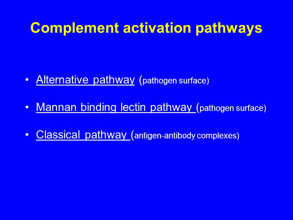 Complement activation pathways Alternative pathway ( pathogen surface) Mannan binding lectin pathway ( pathogen surface) Classical pathway ( antigen-antibody complexes)