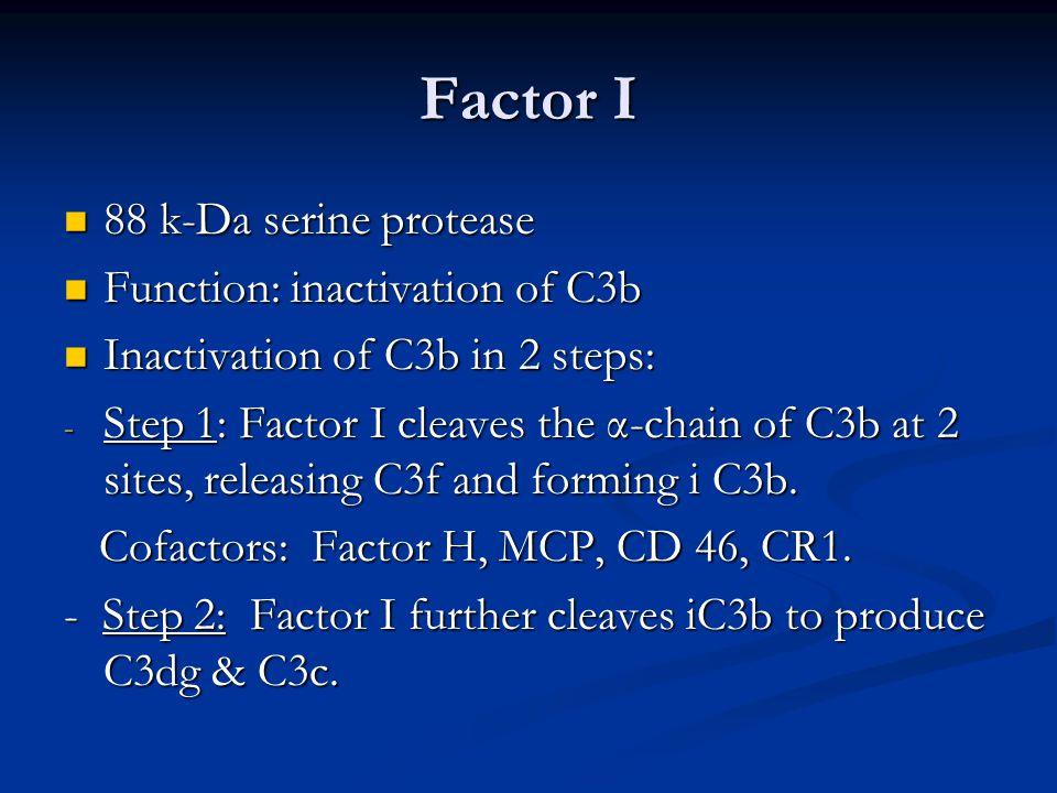 Factor I 88 k-Da serine protease 88 k-Da serine protease Function: inactivation of C3b Function: inactivation of C3b Inactivation of C3b in 2 steps: Inactivation of C3b in 2 steps: - Step 1: Factor I cleaves the α-chain of C3b at 2 sites, releasing C3f and forming i C3b.