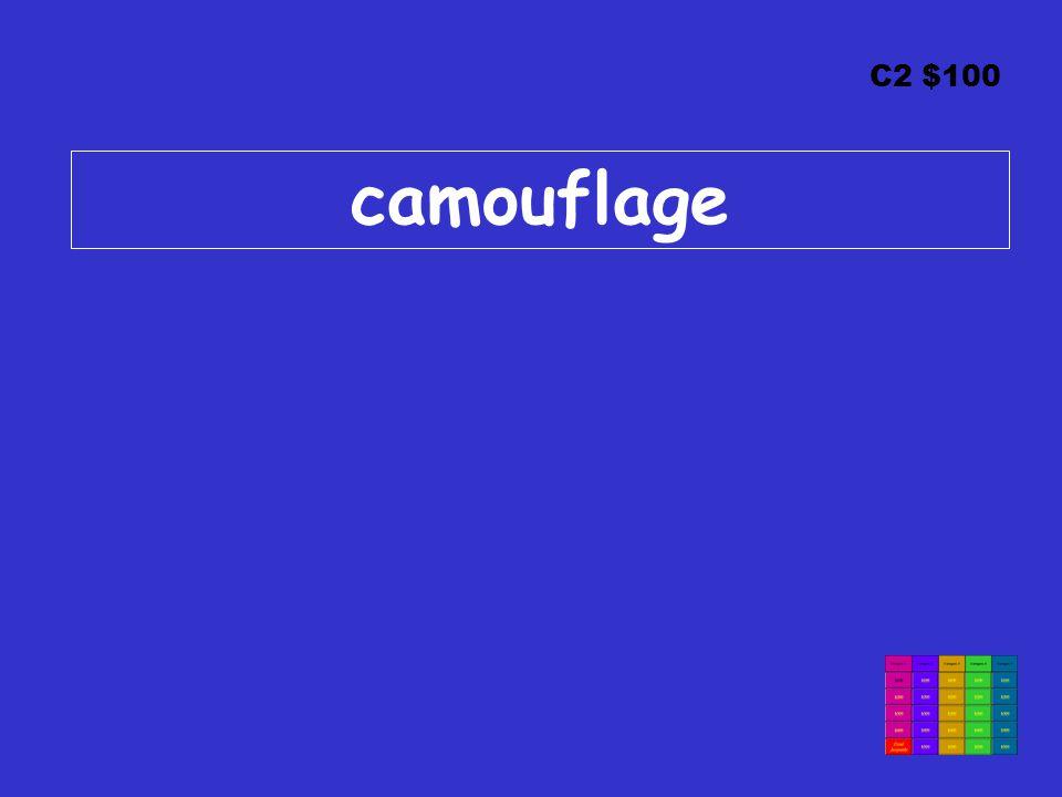 C2 $100 camouflage
