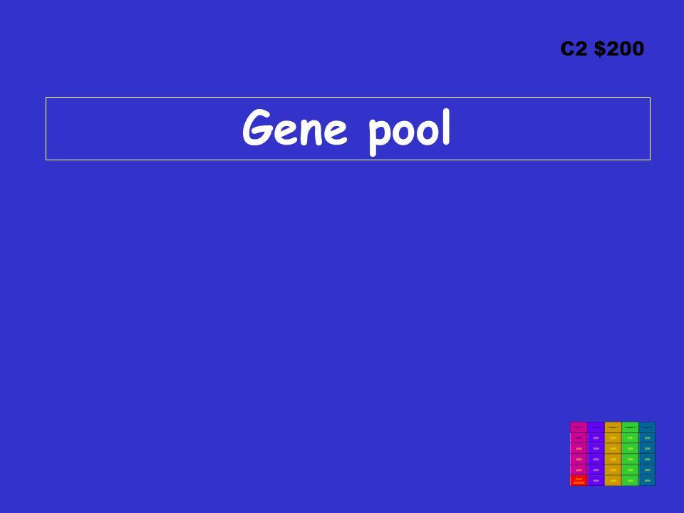 C2 $200 Gene pool