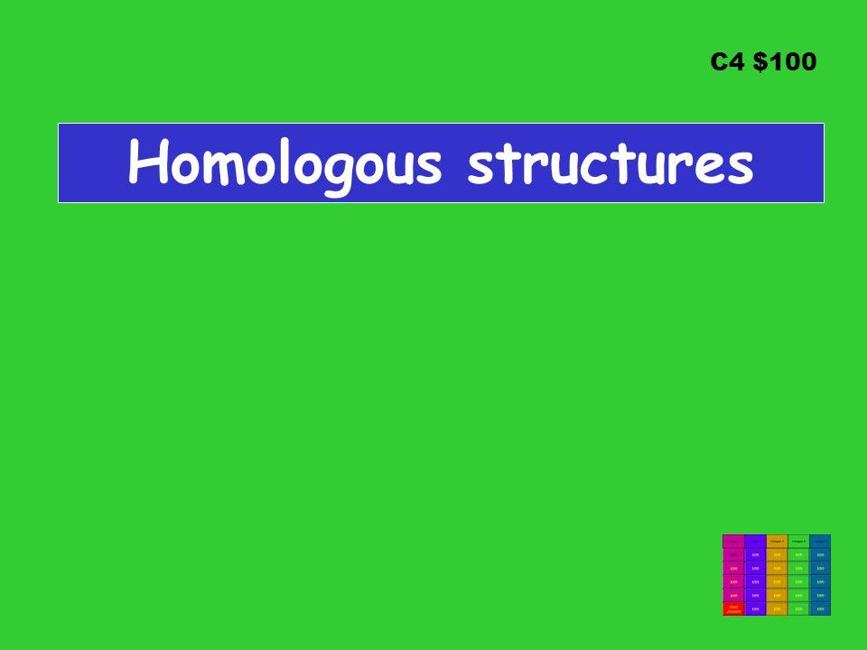 C4 $100 Homologous structures