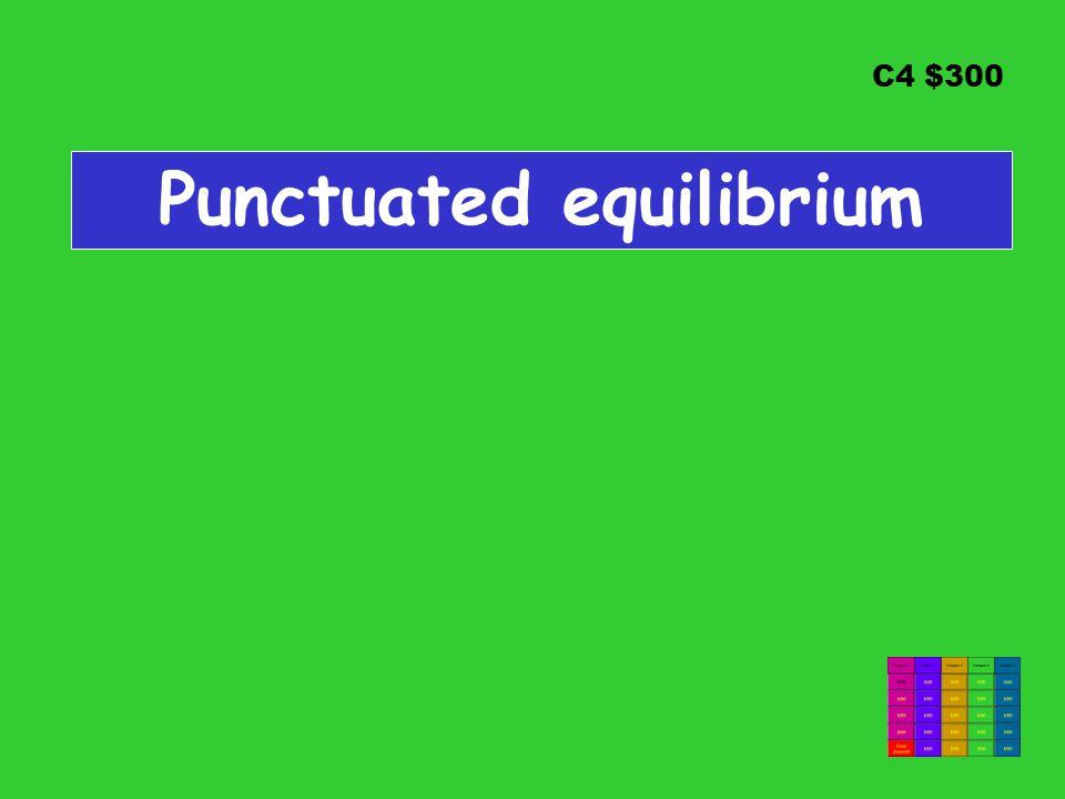 C4 $300 Punctuated equilibrium