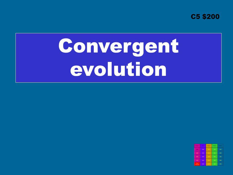 C5 $200 Convergent evolution