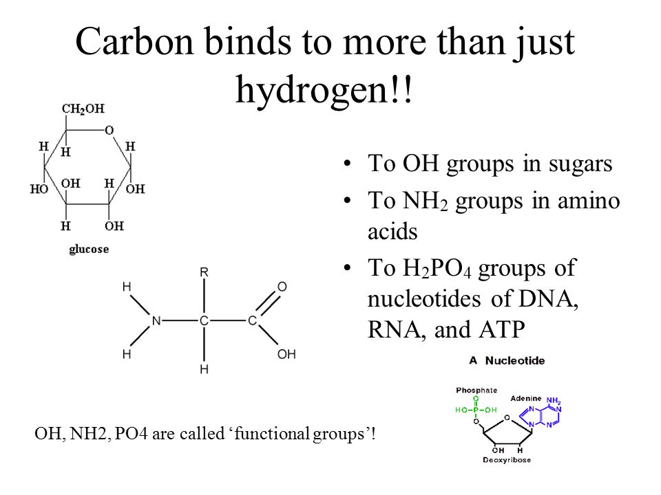 Carbon binds to more than just hydrogen!.
