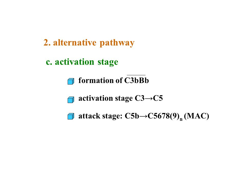 2. alternative pathway c. activation stage formation of C3bBb activation stage C3→C5 attack stage: C5b→C5678(9) n (MAC)