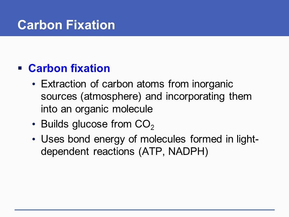 Carbon Fixation  Carbon fixation Extraction of carbon atoms from inorganic sources (atmosphere) and incorporating them into an organic molecule Build