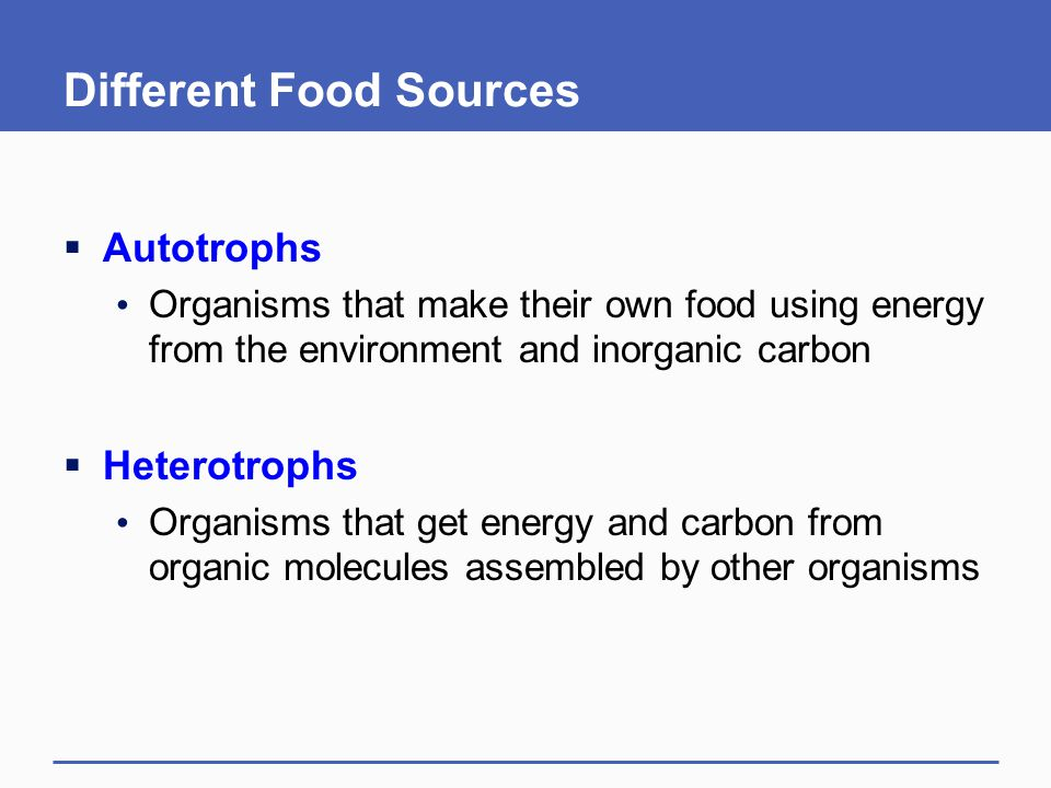 Different Food Sources  Autotrophs Organisms that make their own food using energy from the environment and inorganic carbon  Heterotrophs Organisms