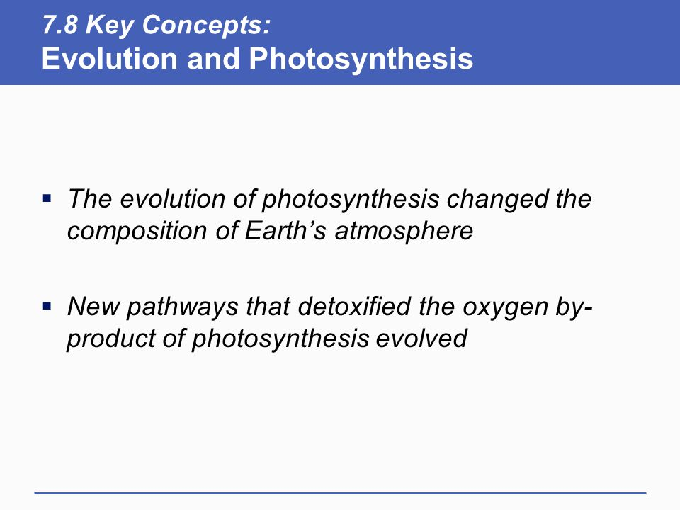 7.8 Key Concepts: Evolution and Photosynthesis  The evolution of photosynthesis changed the composition of Earth's atmosphere  New pathways that detoxified the oxygen by- product of photosynthesis evolved