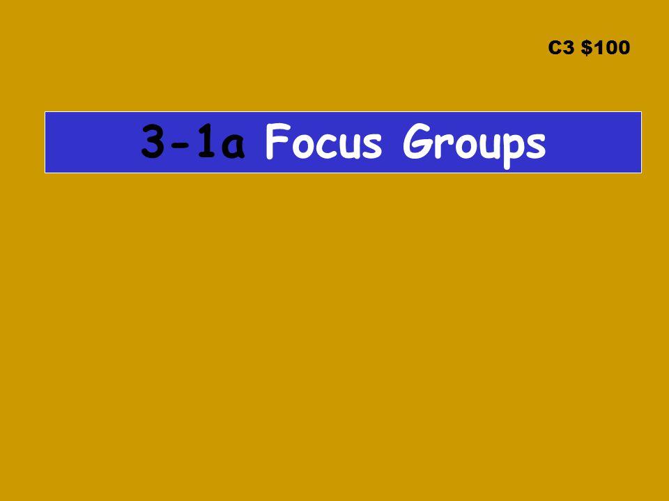 C3 $100 3-1a Focus Groups