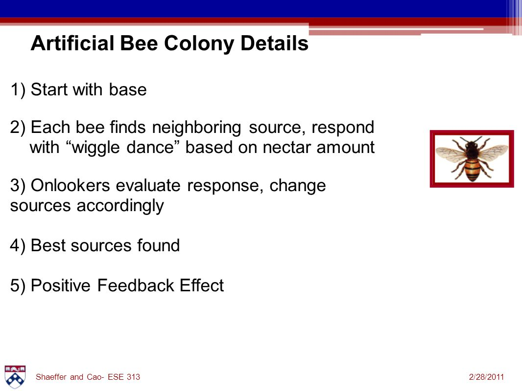 2/28/2011Shaeffer and Cao- ESE 313 1) Start with base 2) Each bee finds neighboring source, respond with wiggle dance based on nectar amount 3) Onlookers evaluate response, change sources accordingly 4) Best sources found 5) Positive Feedback Effect Artificial Bee Colony Details