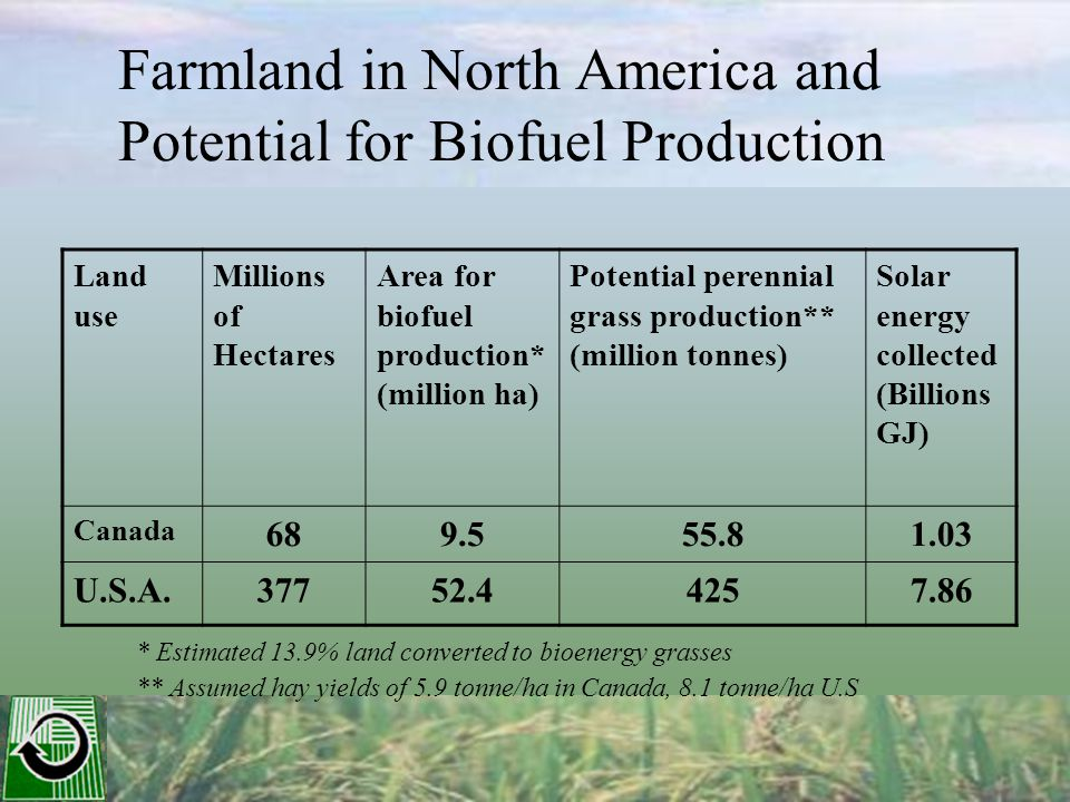 * Estimated 13.9% land converted to bioenergy grasses ** Assumed hay yields of 5.9 tonne/ha in Canada, 8.1 tonne/ha U.S Land use Millions of Hectares Area for biofuel production* (million ha) Potential perennial grass production** (million tonnes) Solar energy collected (Billions GJ) Canada 689.555.81.03 U.S.A.37752.44257.86 Farmland in North America and Potential for Biofuel Production