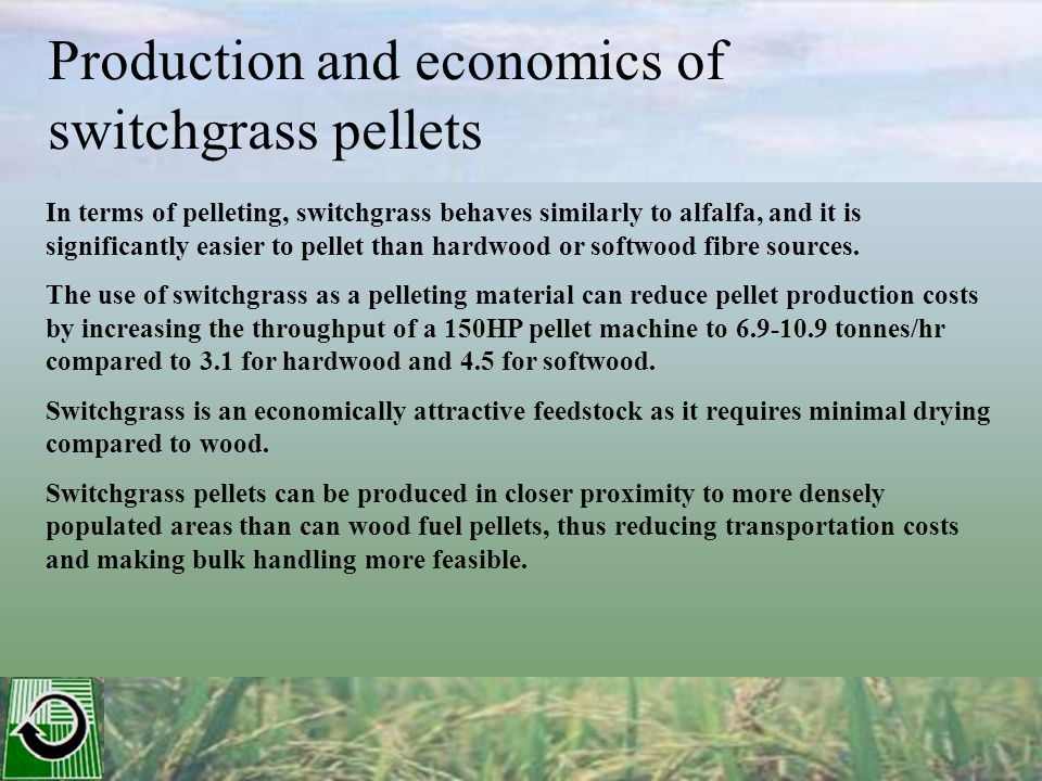 Production and economics of switchgrass pellets In terms of pelleting, switchgrass behaves similarly to alfalfa, and it is significantly easier to pellet than hardwood or softwood fibre sources.