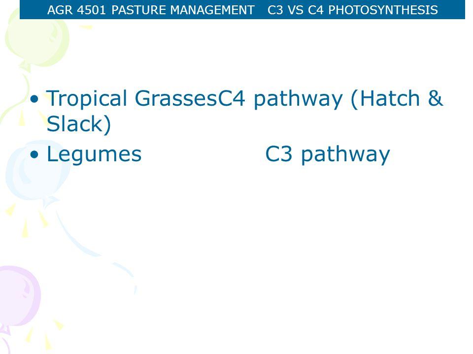 AGR 4501 PASTURE MANAGEMENT C3 VS C4 PHOTOSYNTHESIS C3 pathway C3 Photosynthesis : C3 plants.
