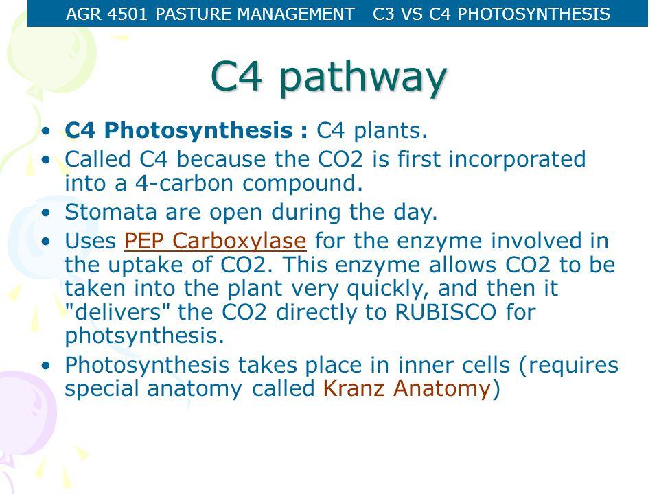 AGR 4501 PASTURE MANAGEMENT C3 VS C4 PHOTOSYNTHESIS C4 pathway C4 Photosynthesis : C4 plants.