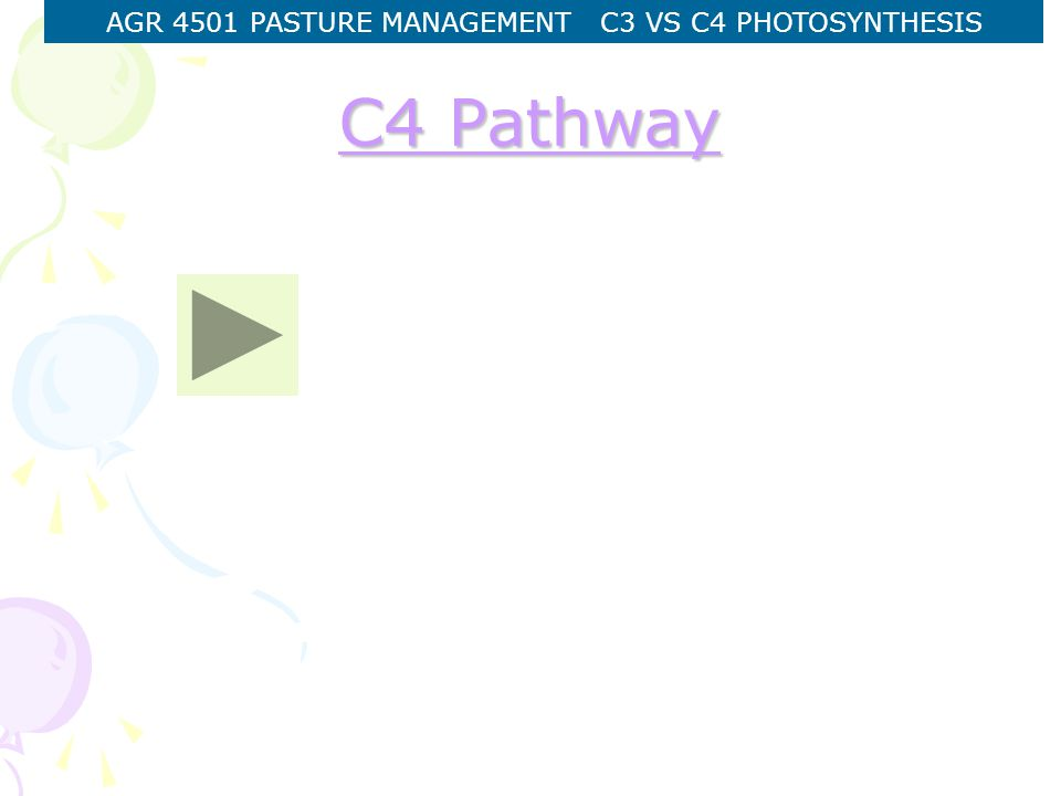 AGR 4501 PASTURE MANAGEMENT C3 VS C4 PHOTOSYNTHESIS C4 Pathway C4 Pathway