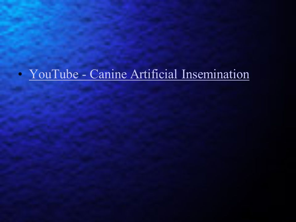 YouTube - Canine Artificial Insemination