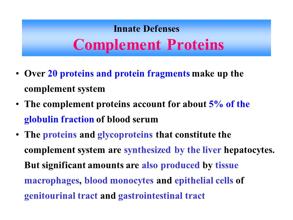 Innate Defenses Complement Proteins Over 20 proteins and protein fragments make up the complement system The complement proteins account for about 5% of the globulin fraction of blood serum The proteins and glycoproteins that constitute the complement system are synthesized by the liver hepatocytes.