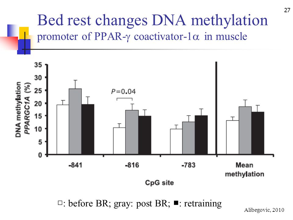 27 Bed rest changes DNA methylation promoter of PPAR-  coactivator-1  in muscle □ : before BR; gray: post BR; ■ : retraining Alibegovic, 2010