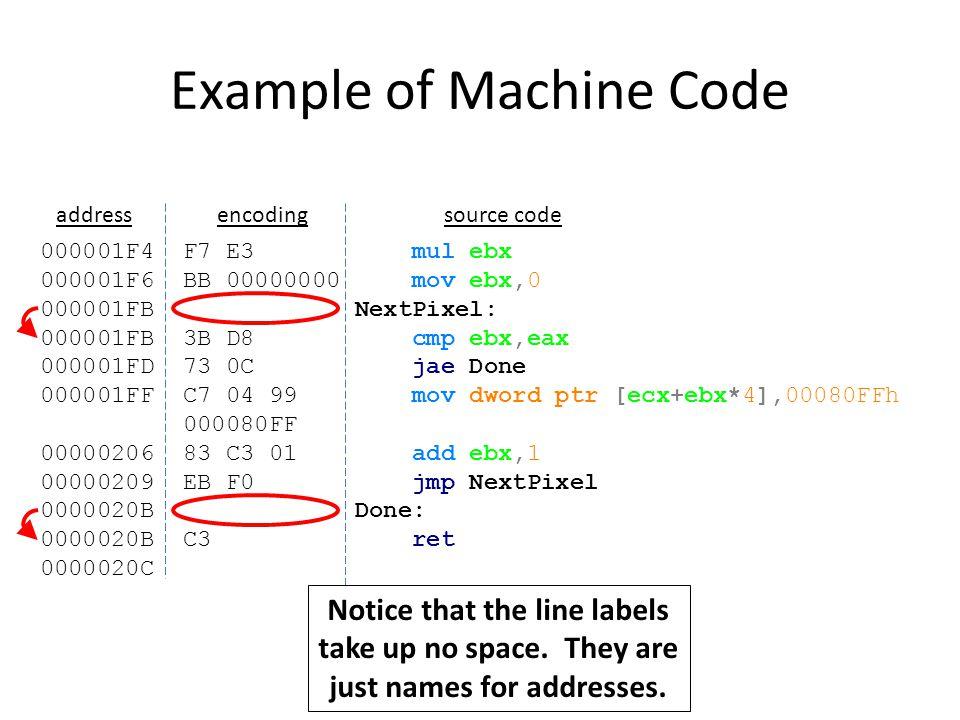 Example of Machine Code 000001F4 F7 E3 mul ebx 000001F6 BB 00000000 mov ebx,0 000001FB NextPixel: 000001FB 3B D8 cmp ebx,eax 000001FD 73 0C jae Done 000001FF C7 04 99 mov dword ptr [ecx+ebx*4],00080FFh 000080FF 00000206 83 C3 01 add ebx,1 00000209 EB F0 jmp NextPixel 0000020B Done: 0000020B C3 ret 0000020C addressencodingsource code Notice that the increase in address is the size of the instruction.