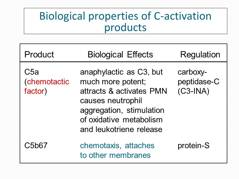 ProductBiological EffectsRegulation Biological properties of C-activation products as C3, but less potent (C3-INA) C4a (anaphylatoxin) opsonization; phagocytosis C4b (opsonin) C4-BP, factor I C3b (opsonin) opsonization; phagocyte activation factors H & I