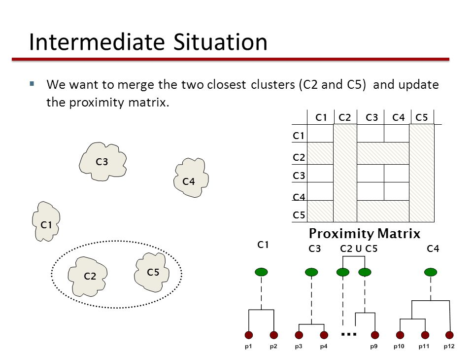 Intermediate Situation  We want to merge the two closest clusters (C2 and C5) and update the proximity matrix.