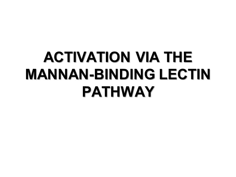 ACTIVATION VIA THE MANNAN-BINDING LECTIN PATHWAY