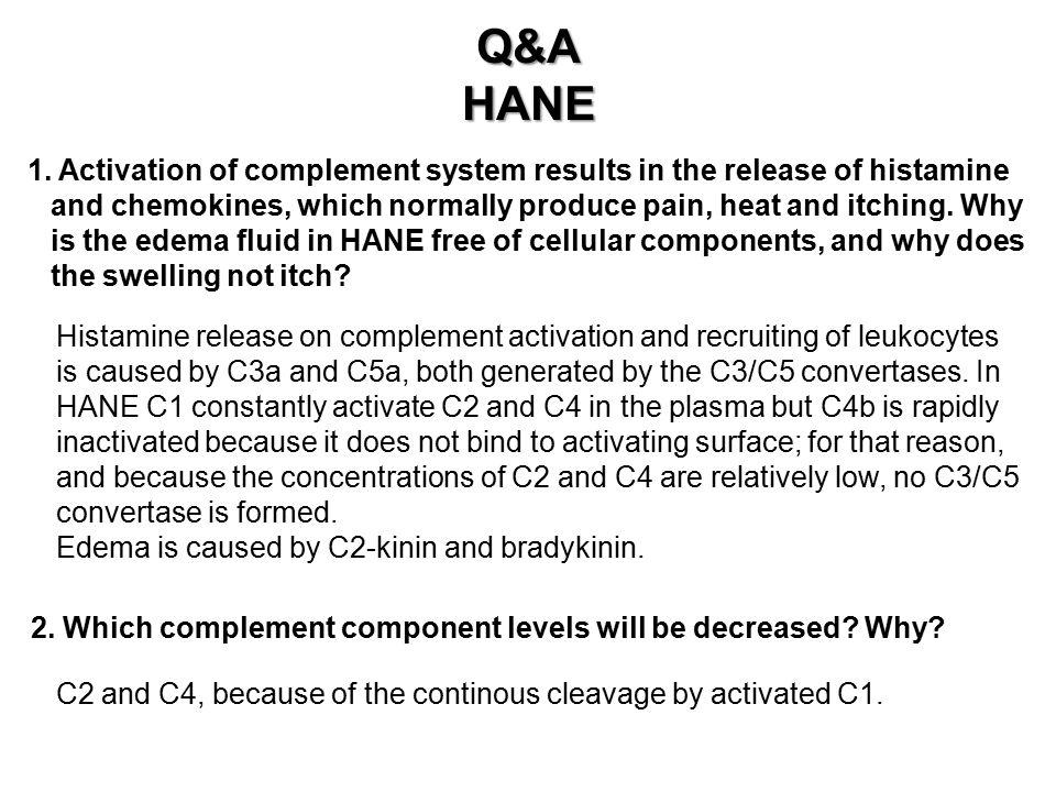 Q&AHANE 1.
