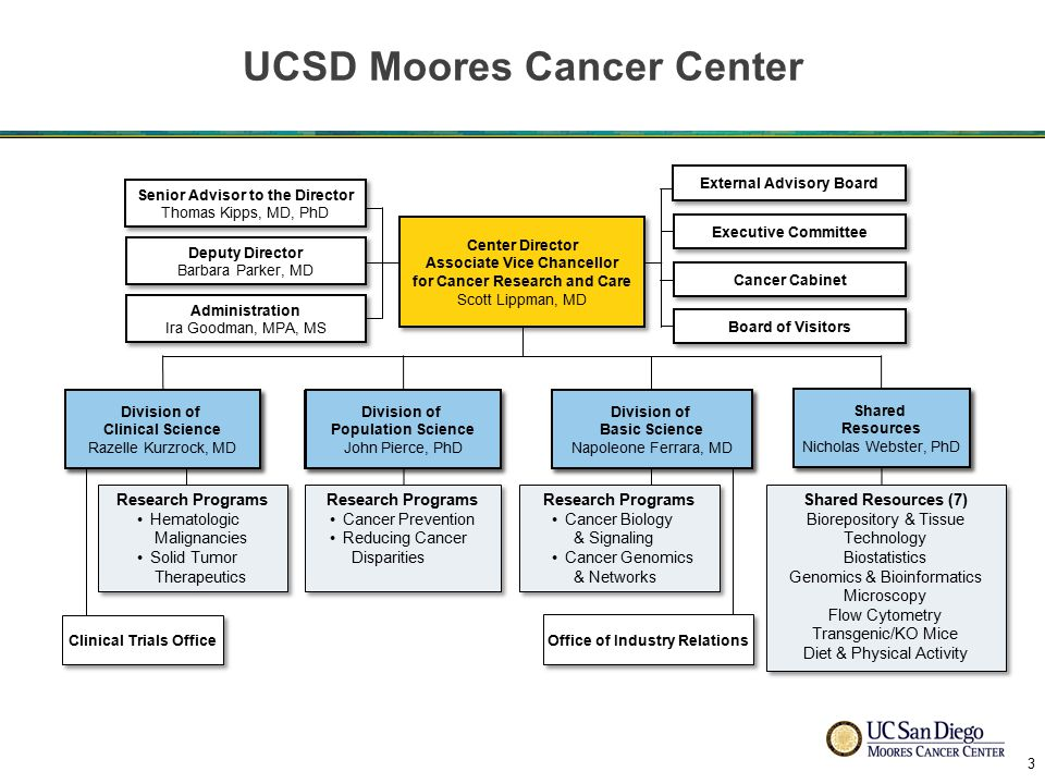 UCSD Moores Cancer Center Shared Resources Nicholas Webster, PhD Shared Resources Nicholas Webster, PhD Deputy Director Barbara Parker, MD Deputy Director Barbara Parker, MD Administration Ira Goodman, MPA, MS Administration Ira Goodman, MPA, MS Clinical Trials Office External Advisory Board Research Programs Cancer Prevention Reducing Cancer Disparities Research Programs Cancer Prevention Reducing Cancer Disparities Research Programs Hematologic Malignancies Solid Tumor Therapeutics Research Programs Hematologic Malignancies Solid Tumor Therapeutics Division of Clinical Science Razelle Kurzrock, MD Division of Clinical Science Razelle Kurzrock, MD Division of Basic Science Napoleone Ferrara, MD Division of Basic Science Napoleone Ferrara, MD Senior Advisor to the Director Thomas Kipps, MD, PhD Senior Advisor to the Director Thomas Kipps, MD, PhD Research Programs Cancer Biology & Signaling Cancer Genomics & Networks Research Programs Cancer Biology & Signaling Cancer Genomics & Networks Office of Industry Relations Executive Committee Cancer Cabinet Board of Visitors Division of Population Science John Pierce, PhD Division of Population Science John Pierce, PhD Center Director Associate Vice Chancellor for Cancer Research and Care Scott Lippman, MD Center Director Associate Vice Chancellor for Cancer Research and Care Scott Lippman, MD Shared Resources (7) Biorepository & Tissue Technology Biostatistics Genomics & Bioinformatics Microscopy Flow Cytometry Transgenic/KO Mice Diet & Physical Activity Shared Resources (7) Biorepository & Tissue Technology Biostatistics Genomics & Bioinformatics Microscopy Flow Cytometry Transgenic/KO Mice Diet & Physical Activity Shared Resources Nicholas Webster, PhD Shared Resources Nicholas Webster, PhD Division of Clinical Science Razelle Kurzrock, MD Division of Clinical Science Razelle Kurzrock, MD Division of Basic Science Napoleone Ferrara, MD Division of Basic Science Napoleone Ferrara, MD Division of Population Science John Pierce, PhD Division of Population Science John Pierce, PhD 3
