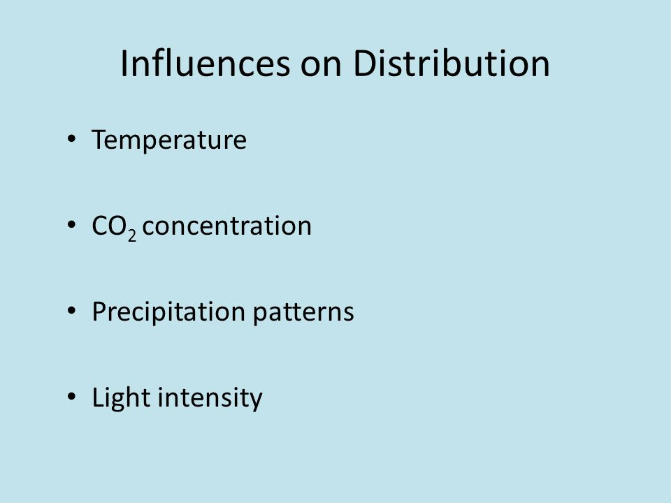 Influences on Distribution Temperature CO 2 concentration Precipitation patterns Light intensity