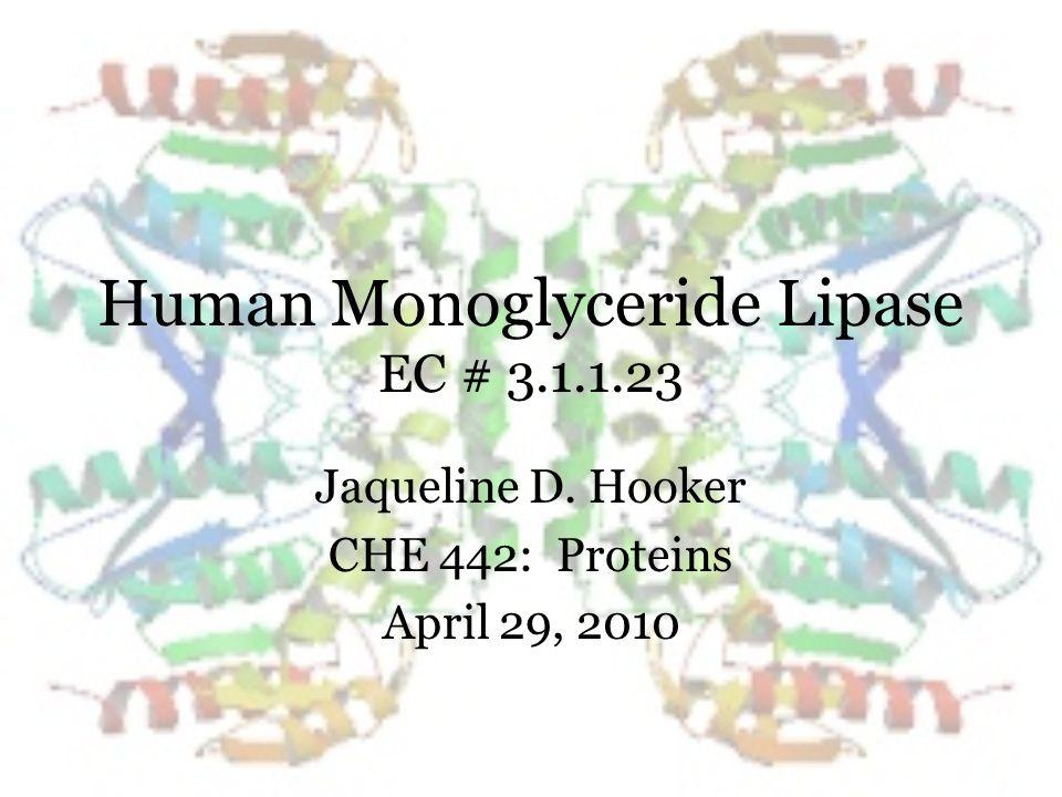 Human Monoglyceride Lipase EC # 3.1.1.23 Jaqueline D. Hooker CHE 442: Proteins April 29, 2010