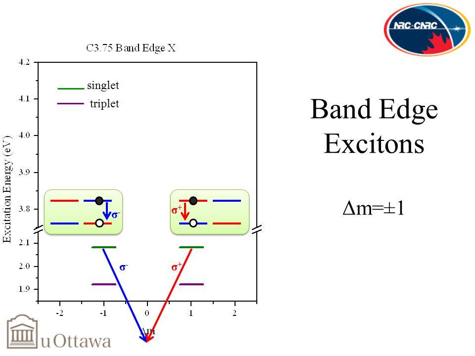 σ-σ- Band Edge Excitons Δm=±1 σ-σ- σ+σ+ σ+σ+ triplet singlet
