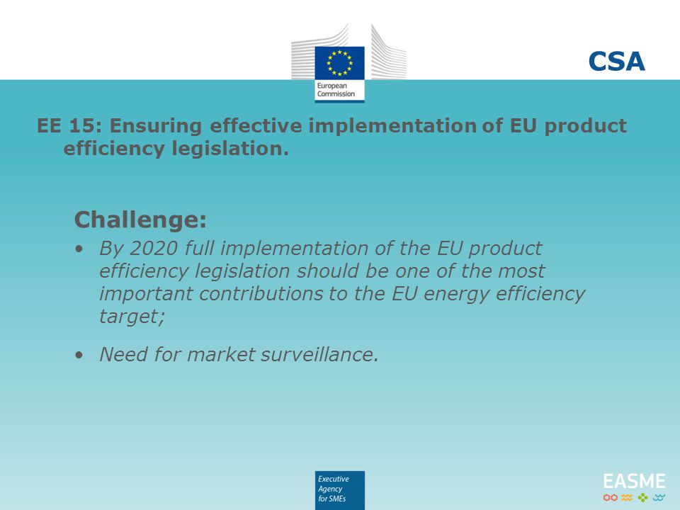 Challenge: By 2020 full implementation of the EU product efficiency legislation should be one of the most important contributions to the EU energy efficiency target; Need for market surveillance.