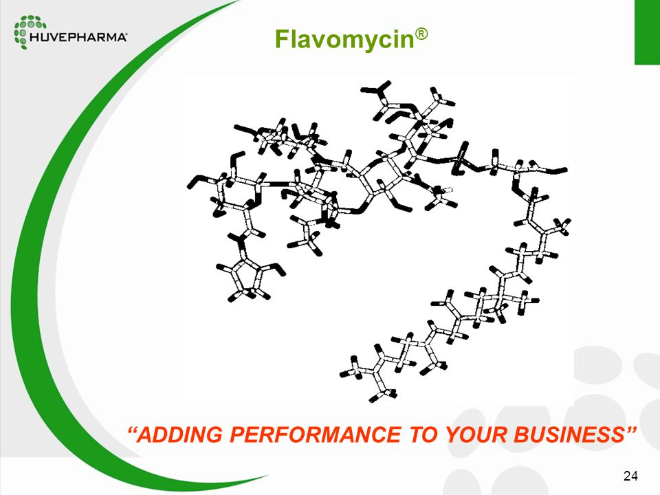 "24 Flavomycin ® ""ADDING PERFORMANCE TO YOUR BUSINESS"""