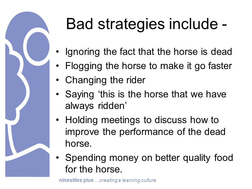 ninestiles plus …creating a learning culture Bad strategies include - Ignoring the fact that the horse is dead Flogging the horse to make it go faster Changing the rider Saying 'this is the horse that we have always ridden' Holding meetings to discuss how to improve the performance of the dead horse.
