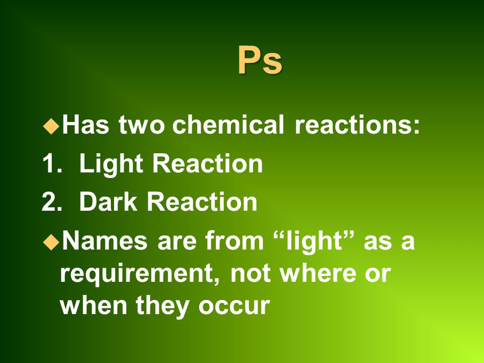 Ps u Has two chemical reactions: 1.Light Reaction 2.
