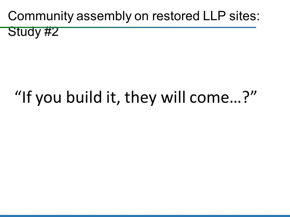 Community assembly on restored LLP sites: Study #2 If you build it, they will come…
