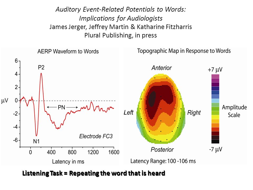 Auditory Event-Related Potentials to Words: Implications for Audiologists James Jerger, Jeffrey Martin & Katharine Fitzharris Plural Publishing, in press Listening Task = Repeating the word that is heard
