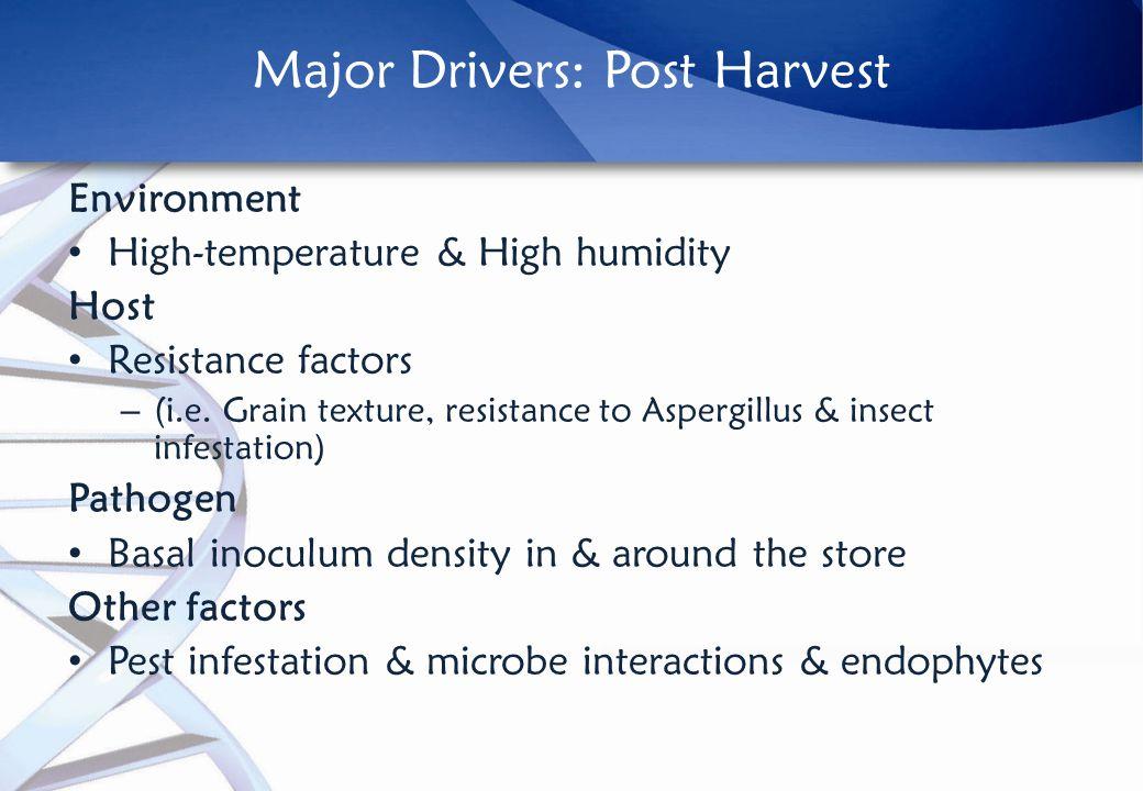 Major Drivers: Post Harvest Environment High-temperature & High humidity Host Resistance factors – (i.e.