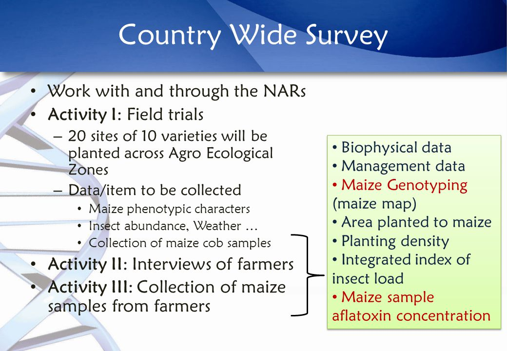 Country Wide Survey Work with and through the NARs Activity I: Field trials – 20 sites of 10 varieties will be planted across Agro Ecological Zones – Data/item to be collected Maize phenotypic characters Insect abundance, Weather … Collection of maize cob samples Activity II: Interviews of farmers Activity III: Collection of maize samples from farmers Biophysical data Management data Maize Genotyping (maize map) Area planted to maize Planting density Integrated index of insect load Maize sample aflatoxin concentration Biophysical data Management data Maize Genotyping (maize map) Area planted to maize Planting density Integrated index of insect load Maize sample aflatoxin concentration