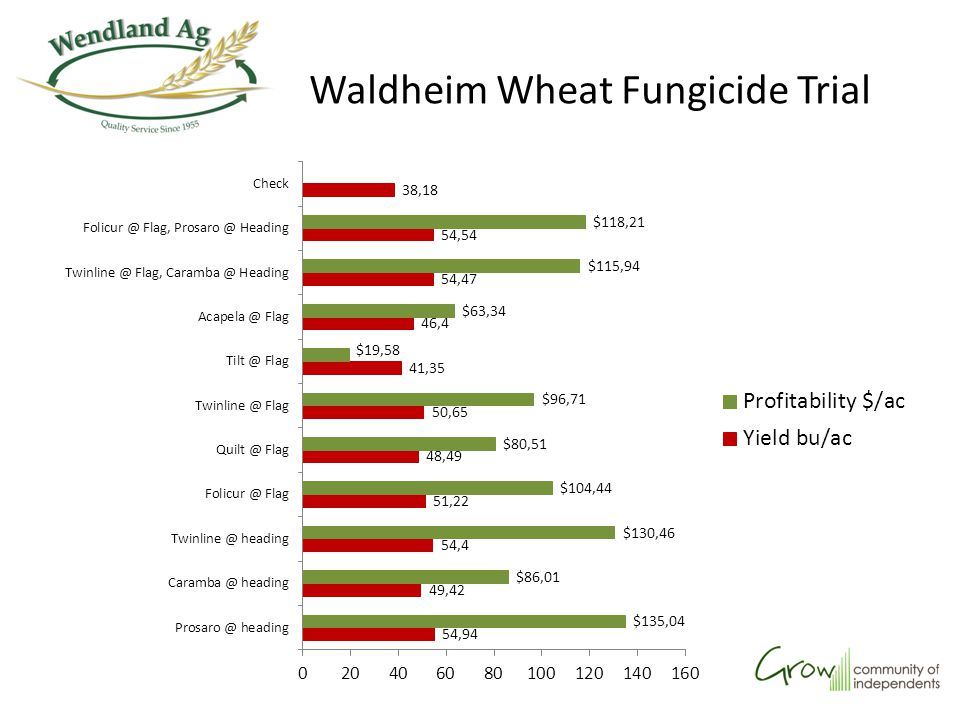 Waldheim Wheat Fungicide Trial