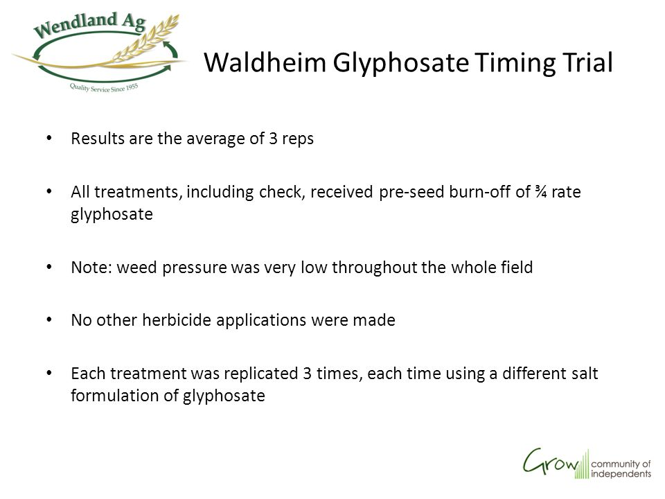 Waldheim Glyphosate Timing Trial Results are the average of 3 reps All treatments, including check, received pre-seed burn-off of ¾ rate glyphosate No