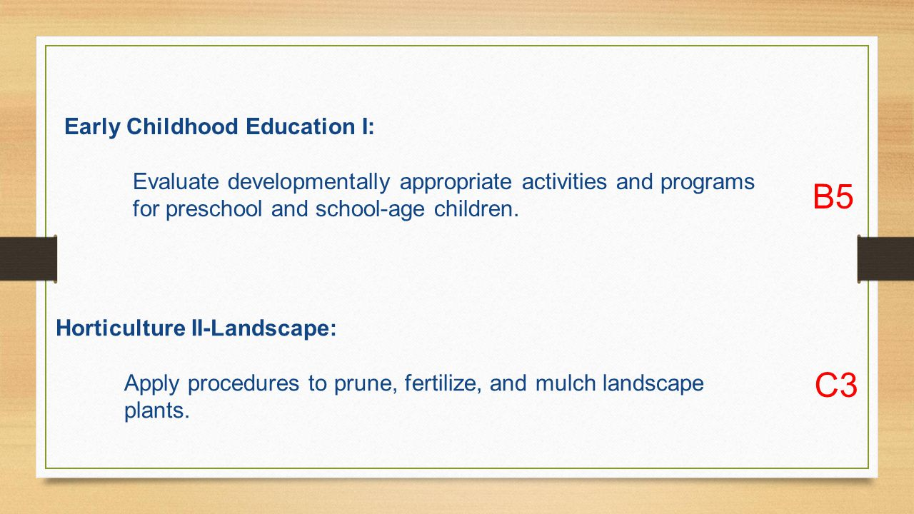 Early Childhood Education I: Evaluate developmentally appropriate activities and programs for preschool and school-age children.