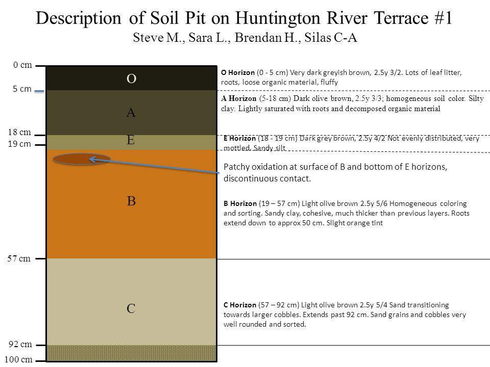 Description of Soil Pit on Huntington River Terrace #1 Steve M., Sara L., Brendan H., Silas C-A 0 cm 100 cm 57 cm 18 cm 92 cm O A E B C A Horizon (5-18 cm) Dark olive brown, 2.5y 3/3; homogeneous soil color.