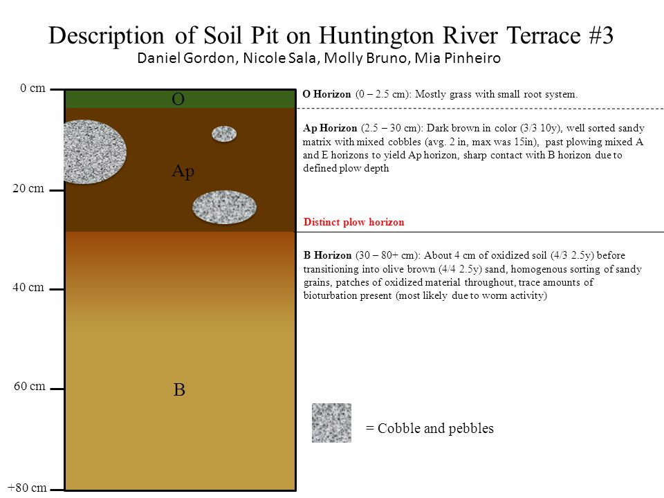 Description of Soil Pit on Huntington River Terrace #4 Michael Chirigos, Ben Wilkes, KJ Darling, Elisabeth McElwee O B A 37±2 cm 51±2 cm 44±2 cm 58±2 cm ≥7 cm O- Horizon (0-7cm) Pine straw, sticks, leaves, some small new growth as well as decomposing leaves and organic matter.