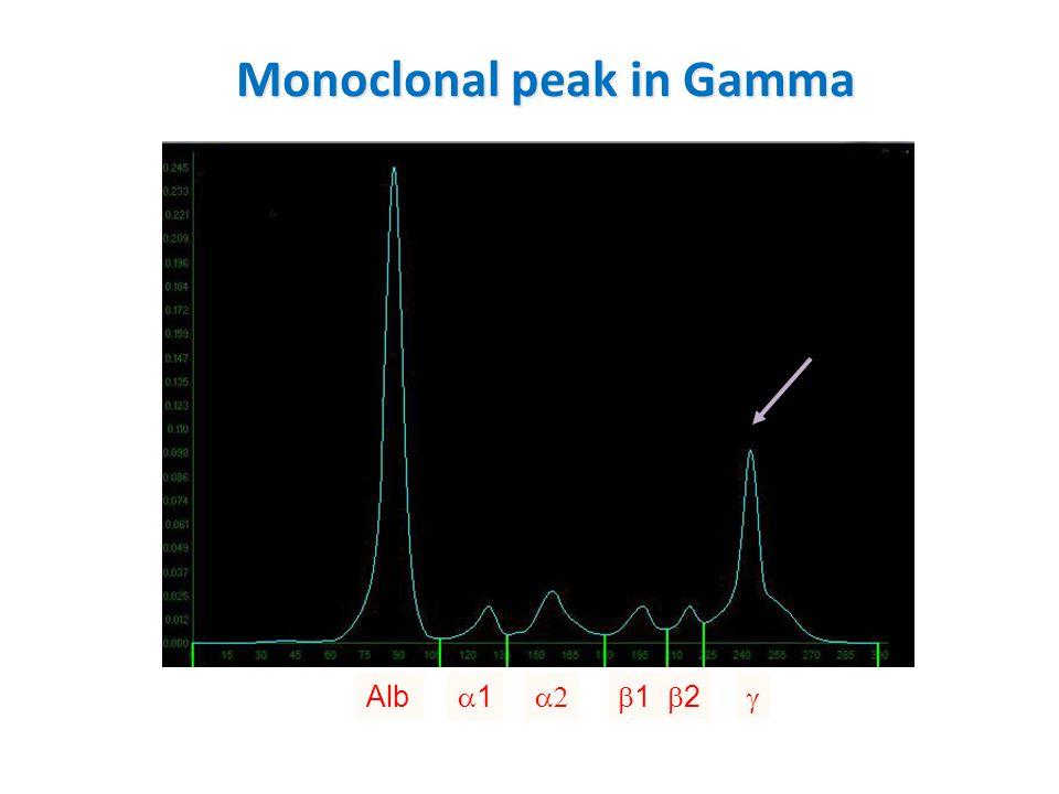 Monoclonal peak in Gamma Alb 11  11 22 